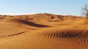sahara-desert-1443015-2-m