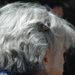 Koloryzacja włosów siwych i rozjaśnianie