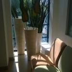 Eleganckie mieszkanie dla singla