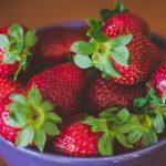 Jak wybrać rodzaje sadzonek truskawek i czym kierować się przy wyborze szkółki?