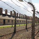 Wycieczki do Auschwitz – Birkenau. Jak zaplanować wyjazd?