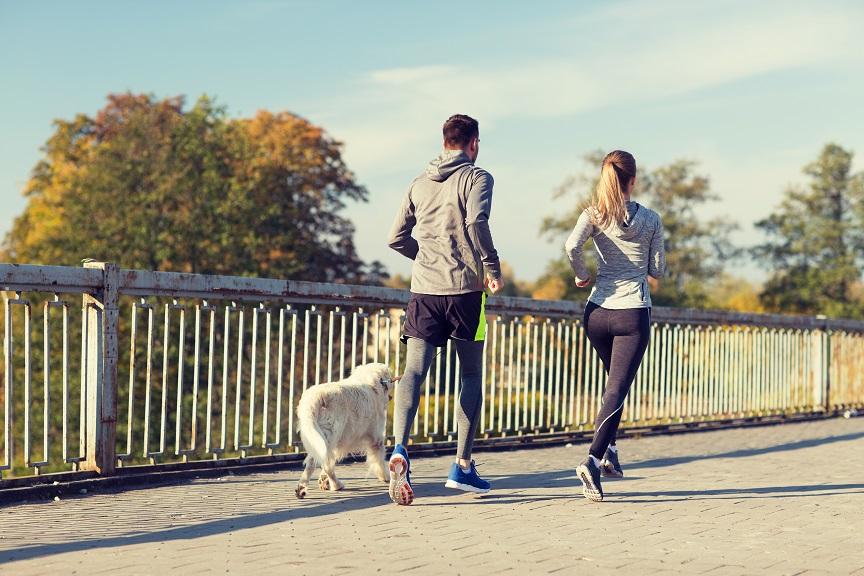 Para z psem