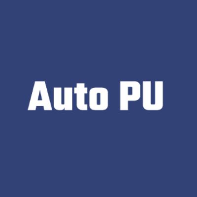 logo firmy auto pu